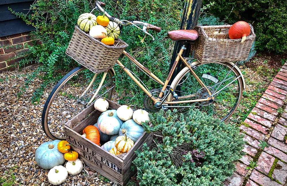 Pumpkin display with old bicycle at Castle Farm, Shoreham