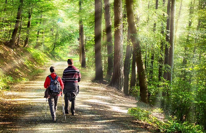 Couple walking through Andrews Wood